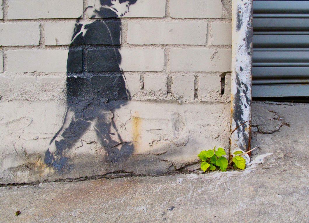 New York Graffiti 17