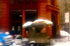NY winter 8